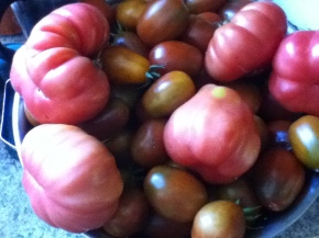 Here are just a few of the tomatoes I grew last year.