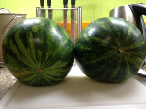 Bifurcate your stable melon into two hemispheres. Move one to a plate and slice the other into almost round slices.