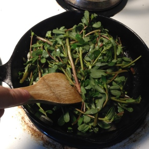 Next, a quick stir-fry with a little slivered garlic and olive oil. Like most greens, the purslane just needs time to wilt. It took only a few minutes.