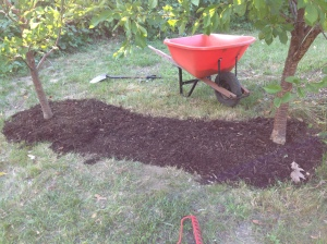 Finally, I topped the crocus bed with a layer of bark mulch.  I extended the mulch around the two trees. As my mom always says- you have to do the pretty.